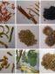 Photographic images of nine common dyes used in the Ming and Qing Dynasties. © Jing Han