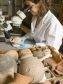 Researcher studying pots in the Petrie Museum © UCL Media Services - University College London