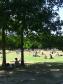 Copenhagen park life ©Charlotte Graminius