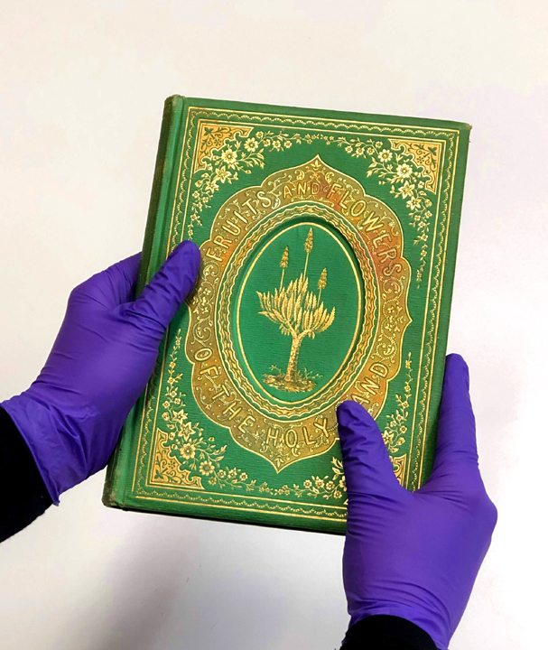 Suspected emerald green bindings should be handled with nitrile gloves. Avoid touching face while handling, and wash hands thoroughly after-wards.  Image courtesy of Melissa Tedone.